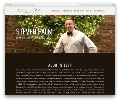 Theme WordPress Divi - stevenpalm.com