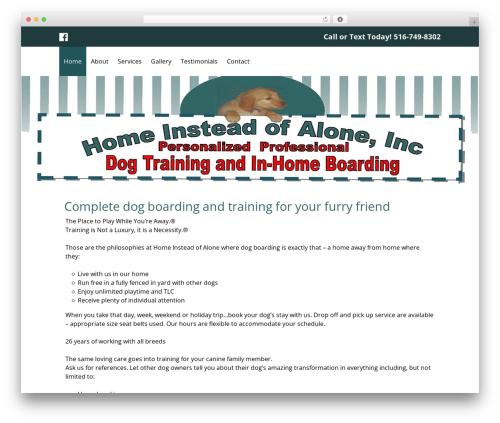 Theme WordPress Small Business Blueprint Theme - homeinsteadofalone.com