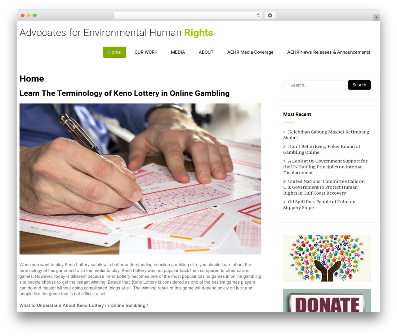 Eco Friendly Lite WP template - ehumanrights.org