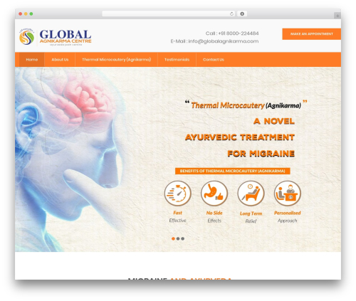 InMedical medical WordPress theme - ayurveda-migraine.com