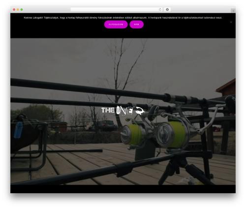 Music Lite premium WordPress theme - theoneboilie.com
