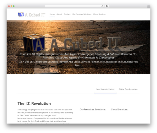 Salient best WordPress template - acubedit.com
