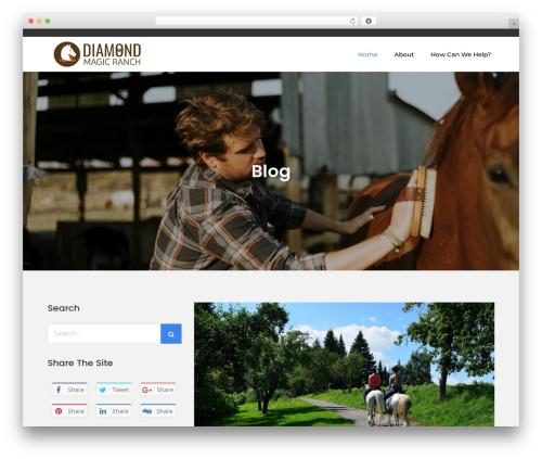 Meilleur Business business WordPress theme - diamondmagicarabians.com