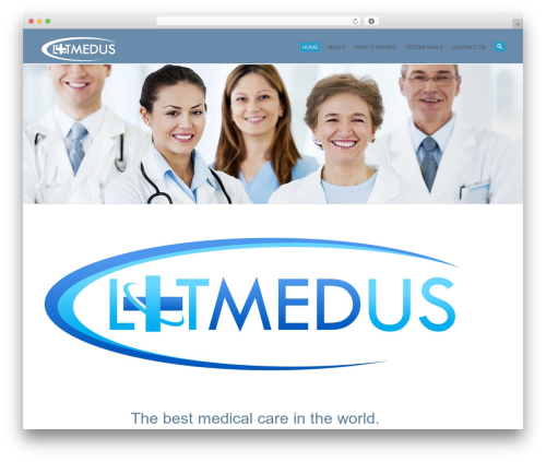 WordPress theme System - litmedus.com