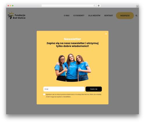 WordPress website template Ascendio - bratslonce.pl