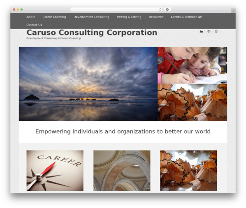 WordPress website template Gridalicious Pro - carusoconsultingcorp.com