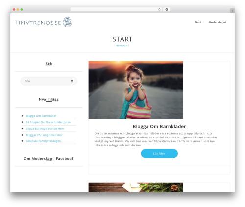 Best WordPress theme Romana - tinytrends.se