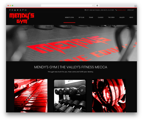 Conica free WordPress theme - mendysgym.com