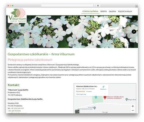 CS GROUP 2016 company WordPress theme - viburnum.pl