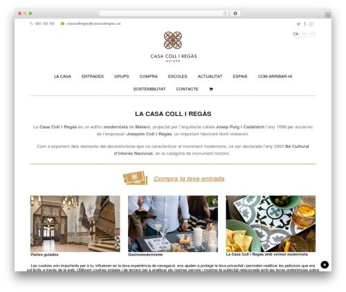 Total WordPress theme download - casacolliregas.cat