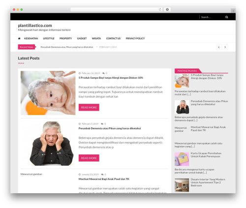 VMagazine Lite top WordPress theme - plantillastico.com