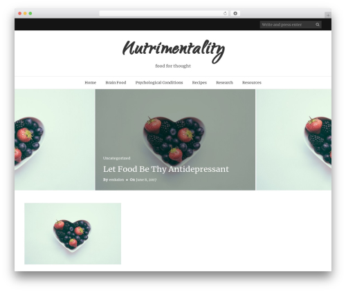 Holland food WordPress theme - nutrimentality.com