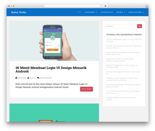 Free WordPress Custom Banners plugin - badoystudio.com