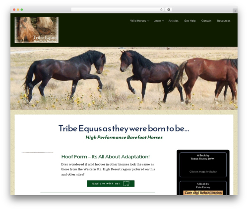 Free WordPress WP Page Templates plugin - tribeequus.com