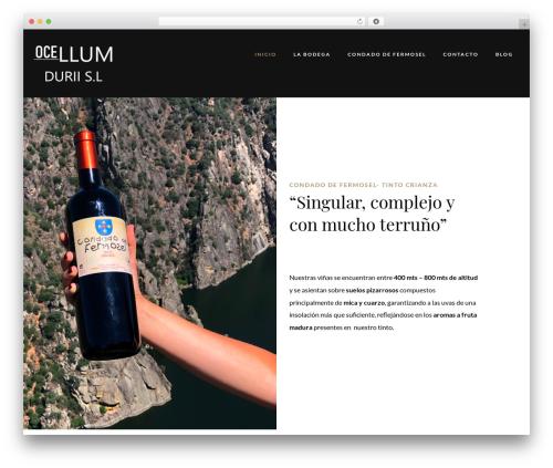 Villenoir best WordPress template - bodegasocellumdurii.com