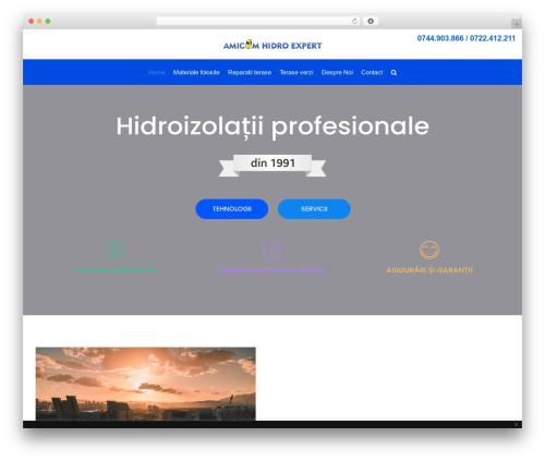 WP template neve - hidroizolatii-profesionale.ro