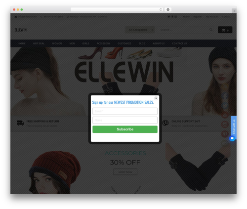 Astore WordPress store theme - ellewin.com