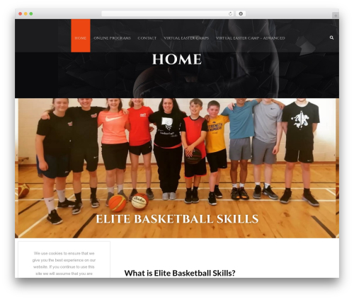 Best WordPress template BigSlam - elitebasketballskills.com