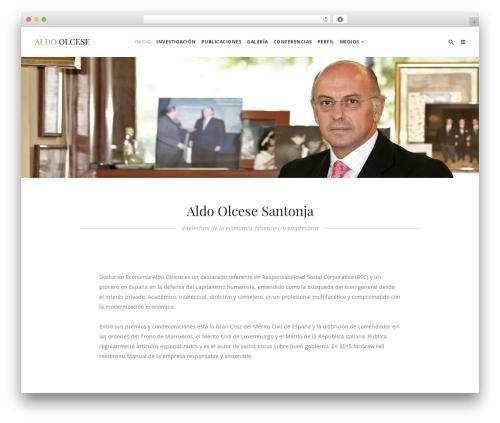 Theme WordPress Hudson - aldoolcese.es