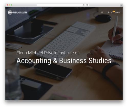 WordPress website template Betheme - elenamichael-accounting.com