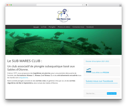 BlueGray WordPress template free download - submaresclub.org