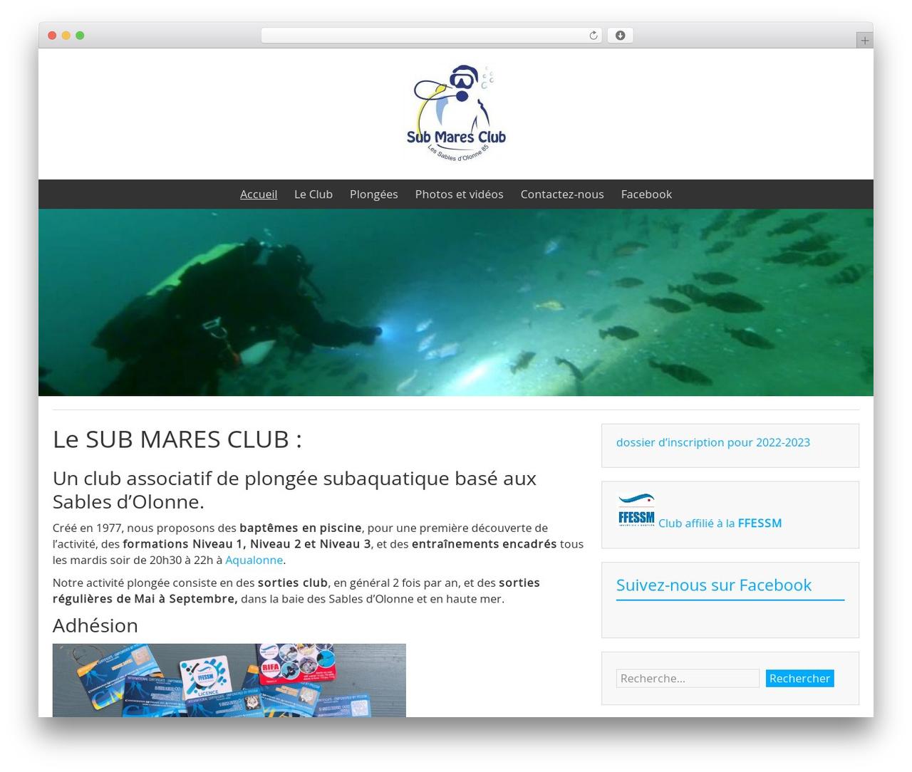 BlueGray WordPress template free download - submaresclub.org