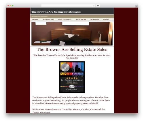 BsnTech Networks WordPress template for business - brownsareselling.com