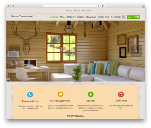 Organic Web Shop best WordPress template - prof26.ru