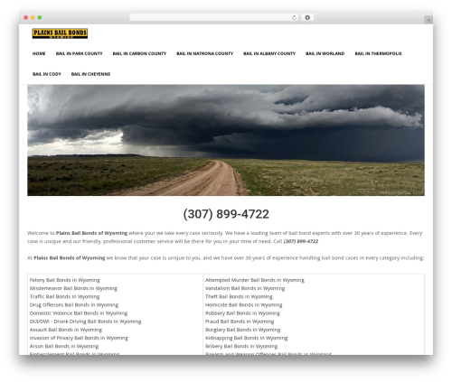 Bizzboss WordPress theme - plainsbailbondswyoming.com