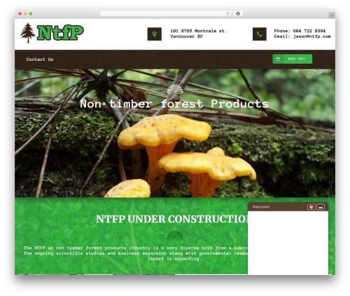 WordPress website template PS Theme Maker - ntfp.com
