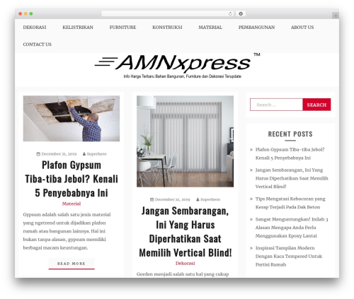 Blog New WordPress blog theme - amnxpress.com