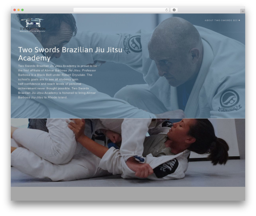 Modular WordPress page template - 2swordsjiujitsu.com