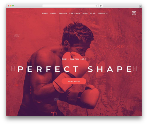 Theme WordPress TopFit - matheodrioui.com