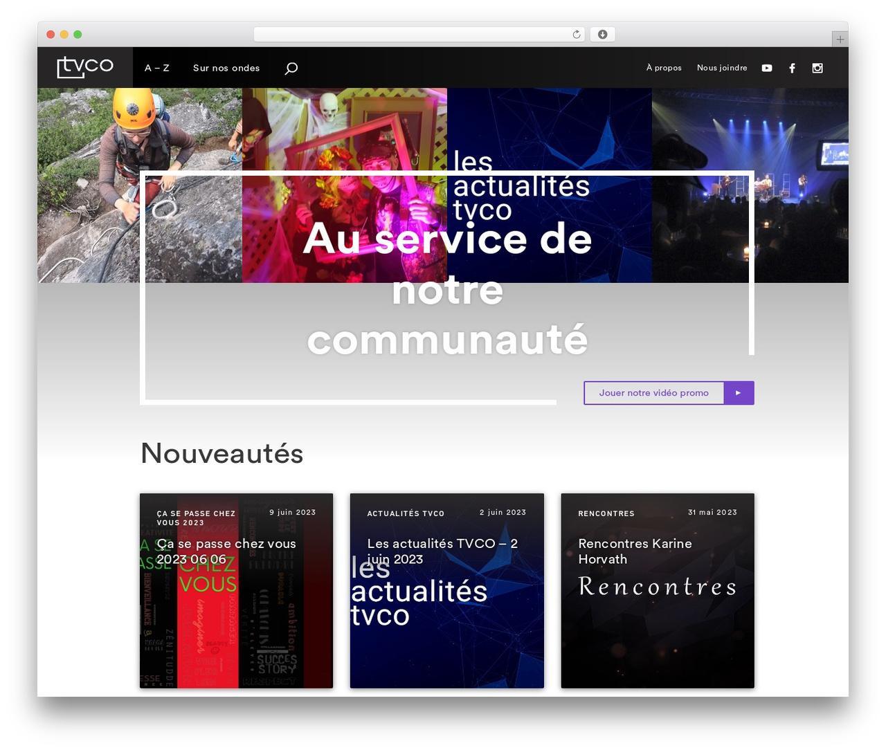 WordPress website template Oasis - tvcotv.com