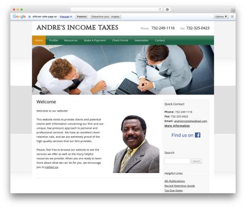 Customized business WordPress theme - andreincometax.com