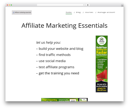 Minus WordPress theme - affiliatemarketingessentials.com