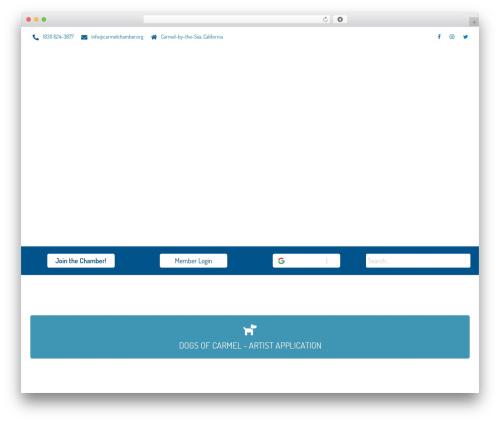 Sydney Pro Child company WordPress theme - carmelchamber.org