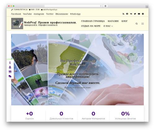 Customizr Pro best WordPress theme - webprof.xyz