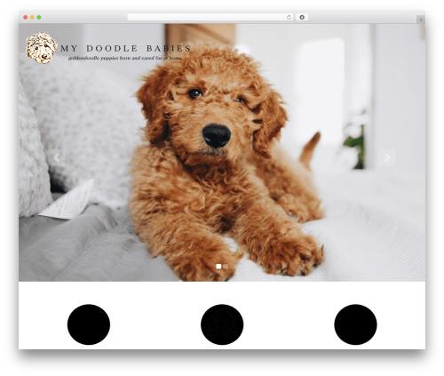 PetCare WordPress page template - mydoodlebabies.com