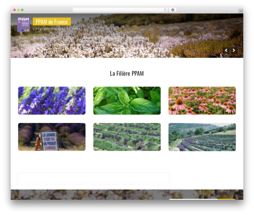 Onefold free WordPress theme - ppamdefrance.com