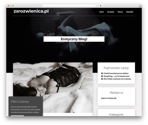 WordPress theme Writer Blog - zsrozwienica.pl