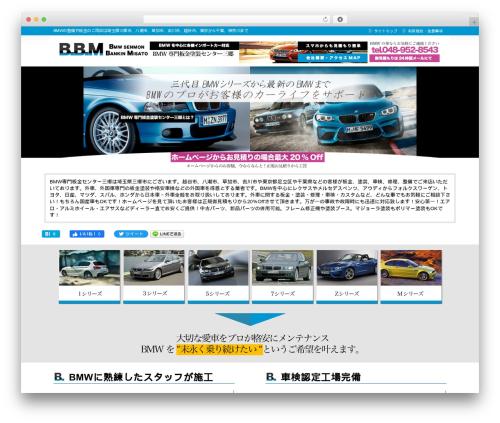 WordPress theme theme029 - bmw-bankin.com