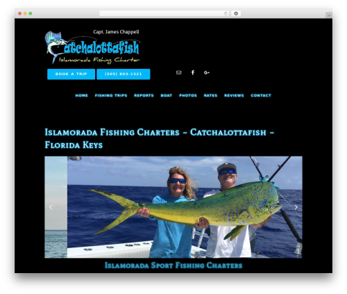 WordPress website template Epik Theme - catchalottafish.com