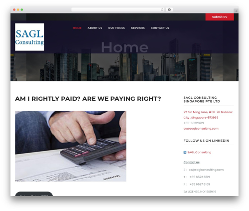 Awesome Business company WordPress theme - saglconsulting.com