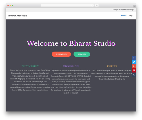 neve WordPress theme - bharatartstudio.com