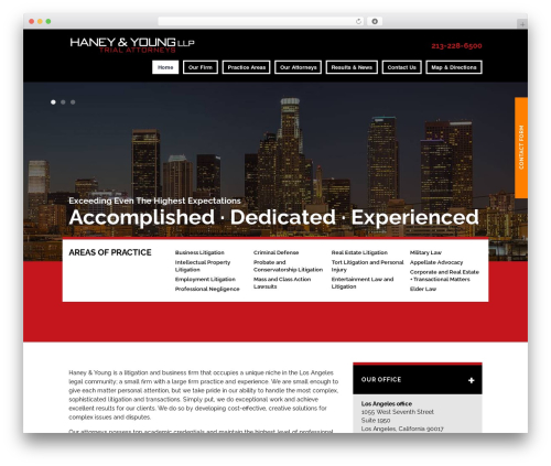 Project X v15 WordPress template for business - haneyyoung.com