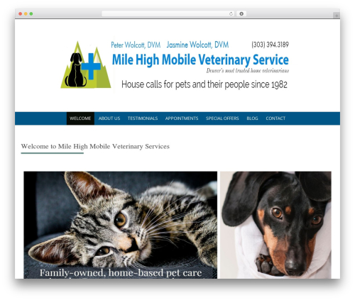 Theme WordPress Pure & Simple Child - milehighmobilevet.com