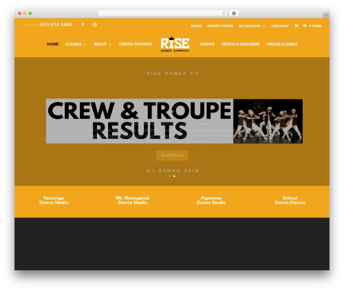 Divi business WordPress theme - risedance.nz