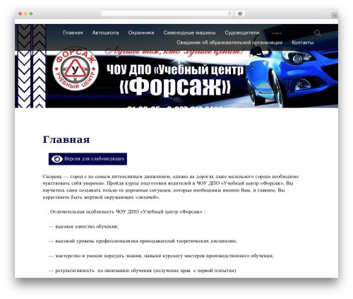 WordPress theme Services - forsag-syzran.ru
