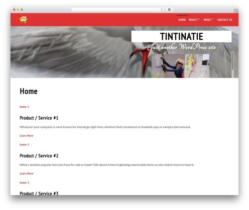 Live Portfolio best free WordPress theme - tintinatie.com